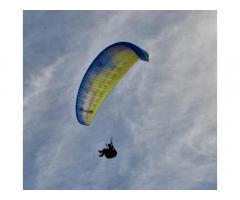 Ozone Buzz Z5 MS 2017